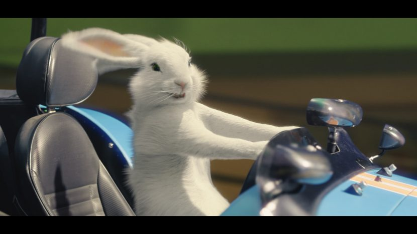 Ein animierter Hase in einem rennauto