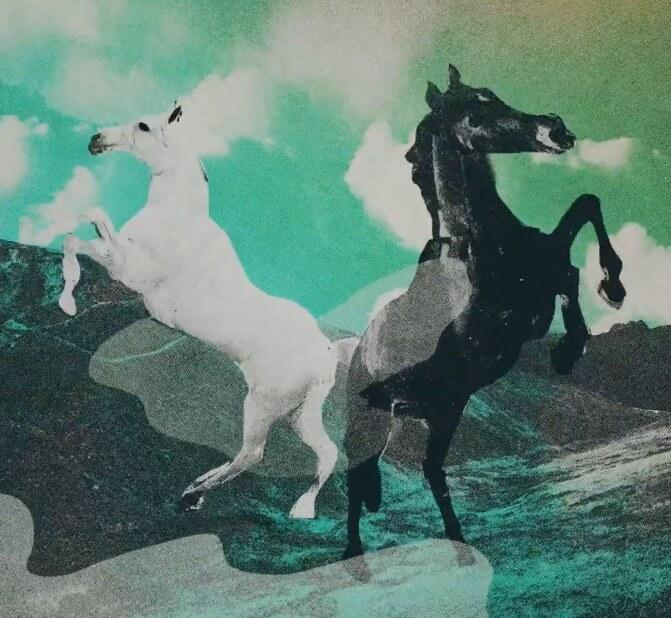 2 springende Pferde